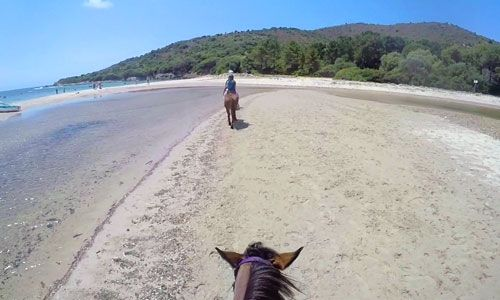 Balade A Cheval Plage